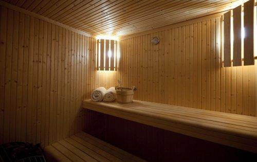 Chalet Bisolet's sauna